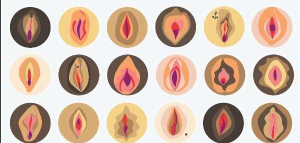 انواع واژن