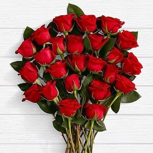 گل رز| بیشتر احساساتی هستید تا منطقی