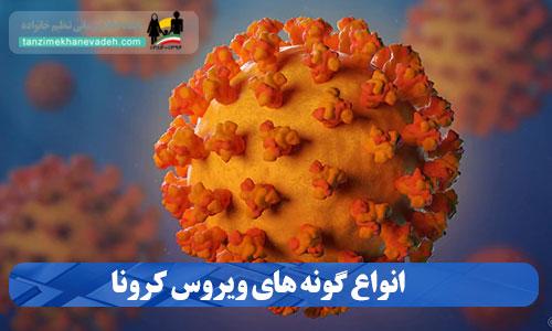 انواع گونه های ویروس کرونا