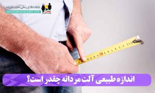 اندازه طبیعی آلت مردانه چقدر است؟