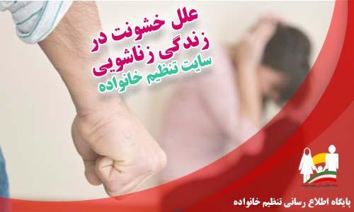 علل خشونت در زندگی زناشویی