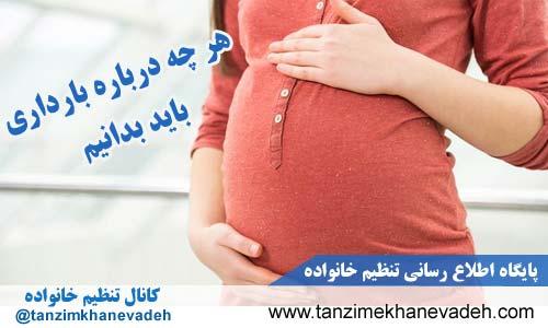 هر چه درباره بارداری باید بدانیم