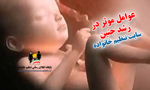 عوامل موثر در رشد جنین