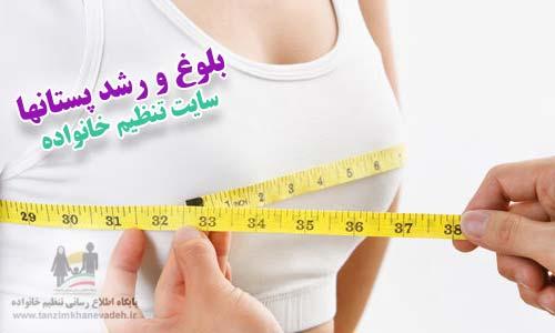 بلوغ و رشد پستان ها